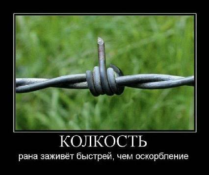 -here comes the san скачать бесплатно mp3: